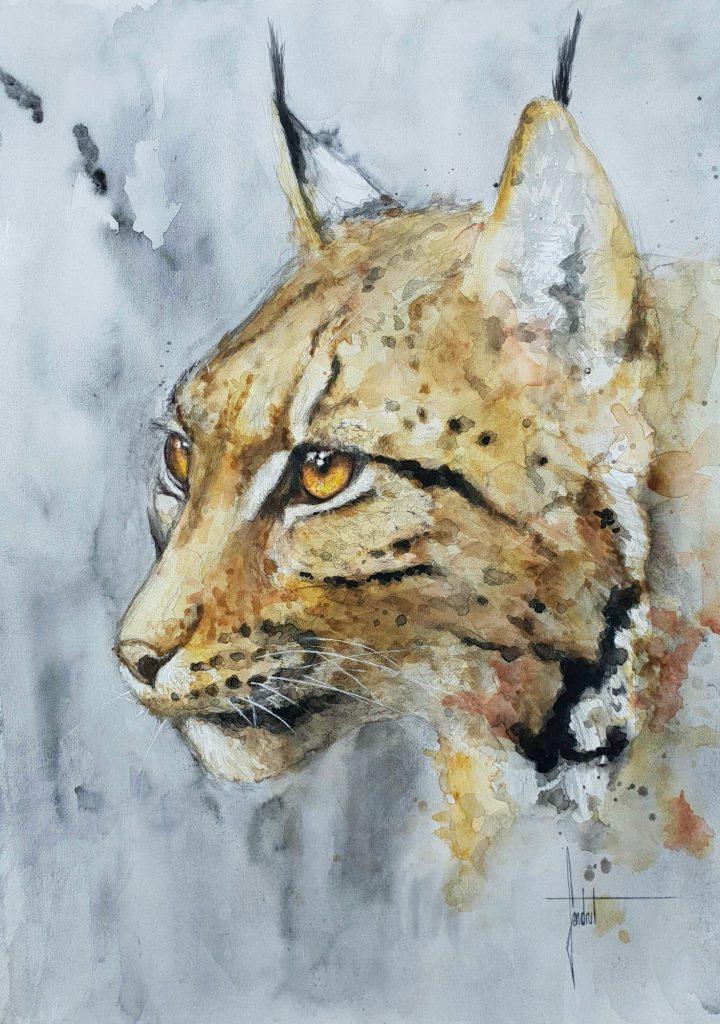 Lynx, espèce menacée et protégée en France